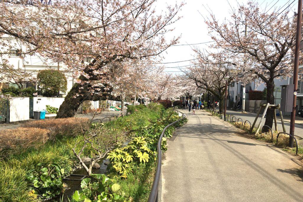 春の訪れと不動産業務